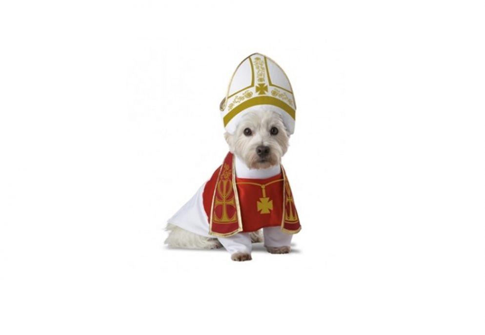 Photos of Dogs Dressed Up Like the Pope