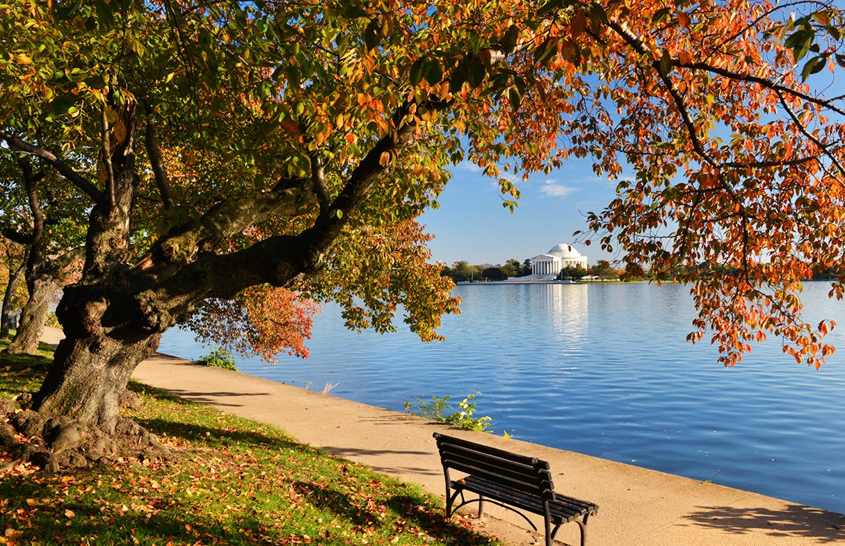 25 Places Around Dc To Take Beautiful Fall Photos