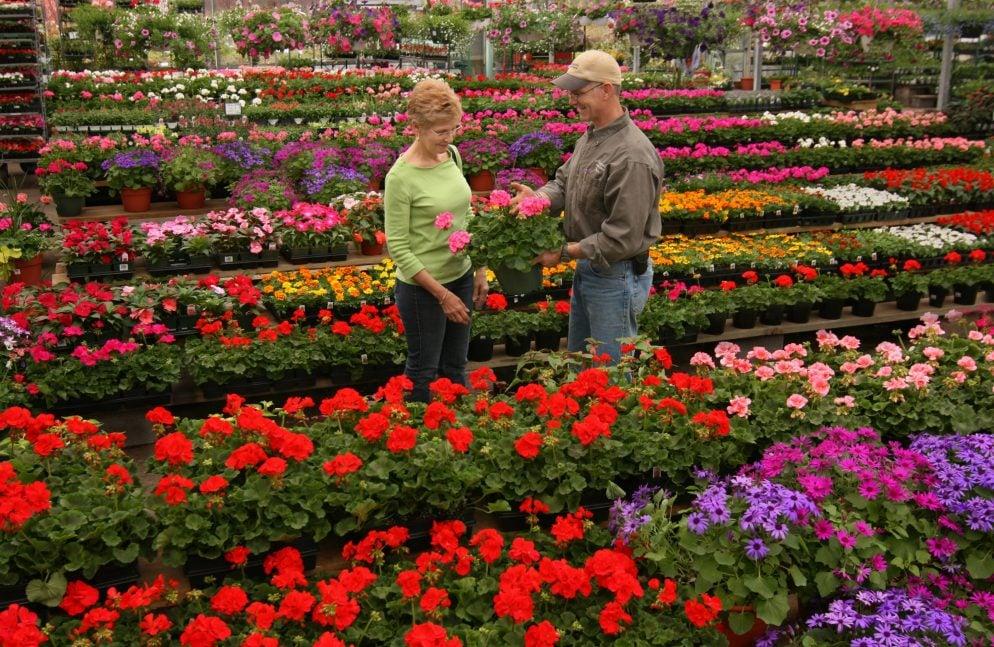 High Quality Washington, DCu0027s Best Lawn And Garden Resources: Merrifield Garden Center