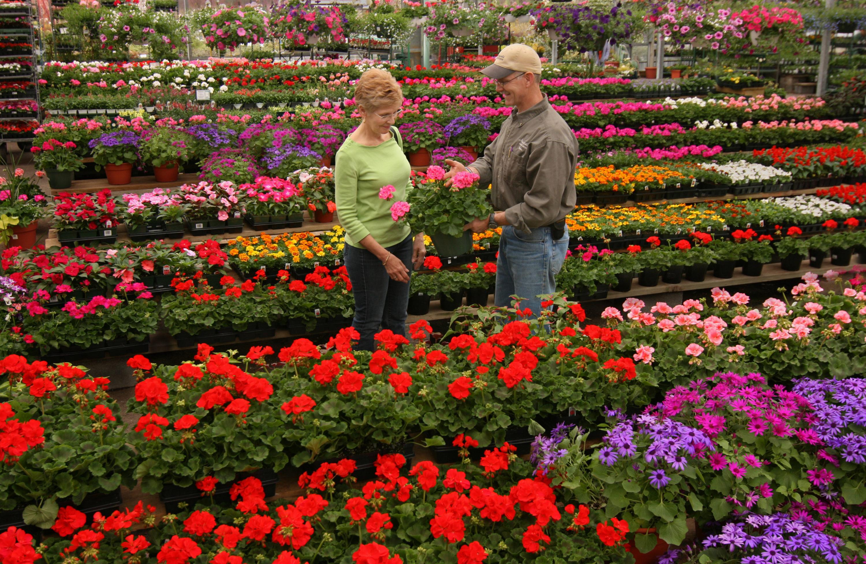 Washington Dc 39 S Best Lawn And Garden Resources Merrifield Garden Center Washingtonian