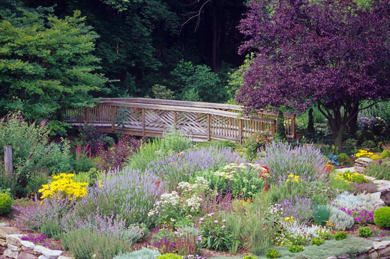 Washington, DC\'s Best Lawn and Garden Resources: Merrifield Garden ...