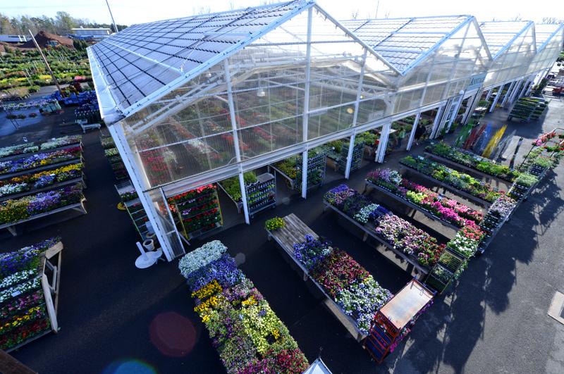 Merrifield Garden Center Gainesville Va Best Idea Garden 2018