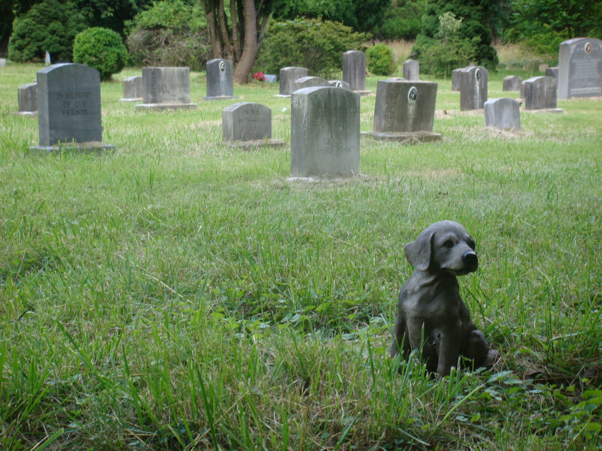 55 000 Pets And 30 People Are Buried In Silver Spring S