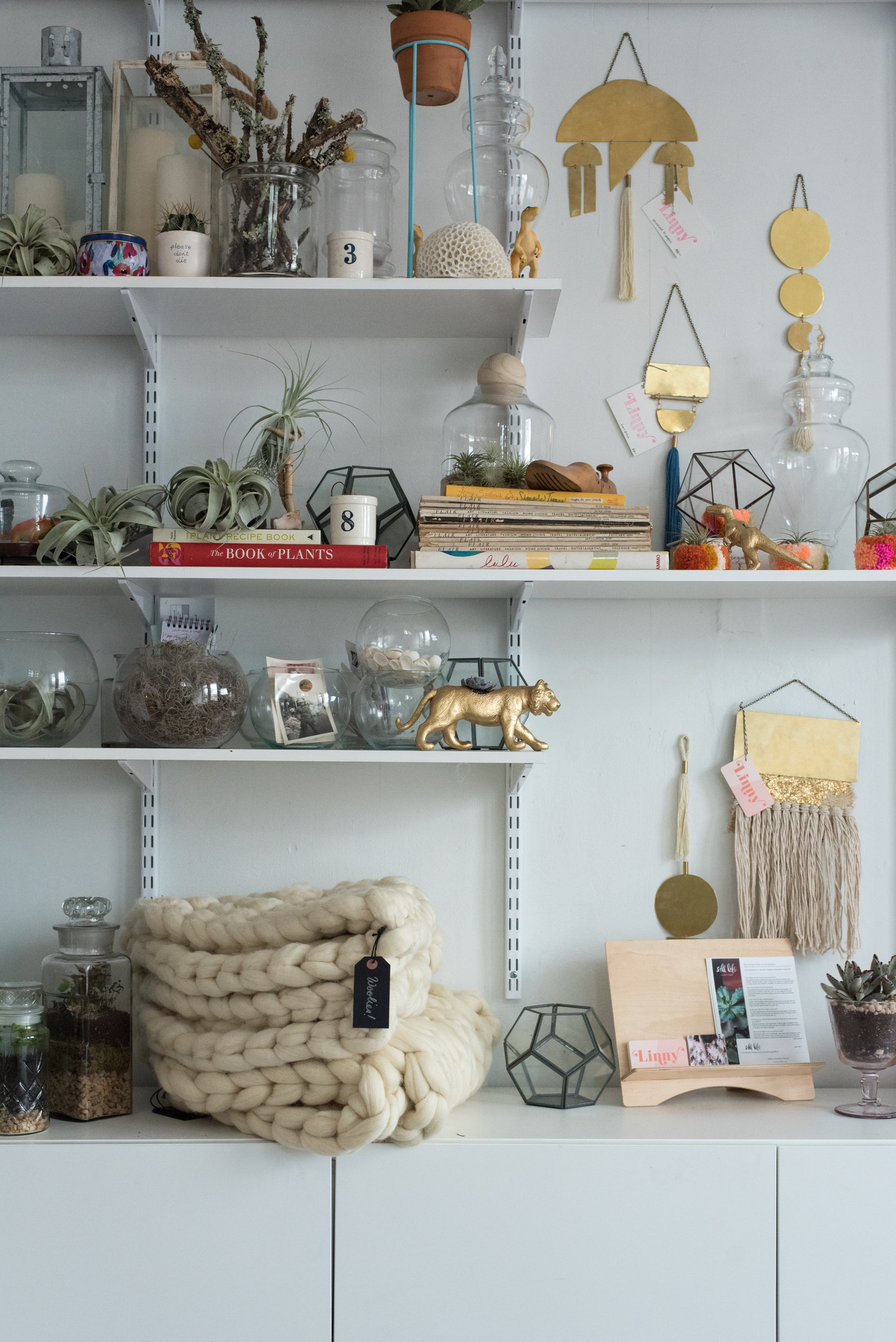 Cheerfully decorated shelves in The Lemon Bowl's sunny front room.