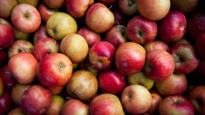 The Best Apples to Use to Make Cider at Home