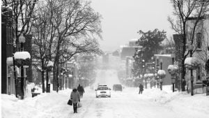 It's Perfectly Okay to Panic About Snow in DC