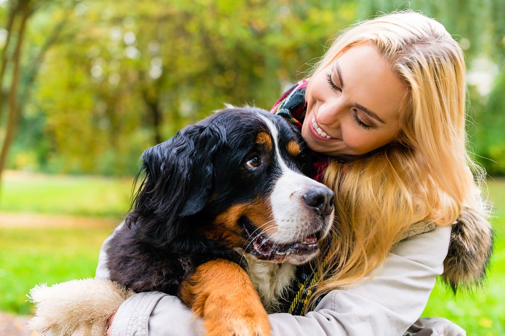 Try to find a family friend to be your pet sitter, or get a referral from your vet. Photograph via iStock.
