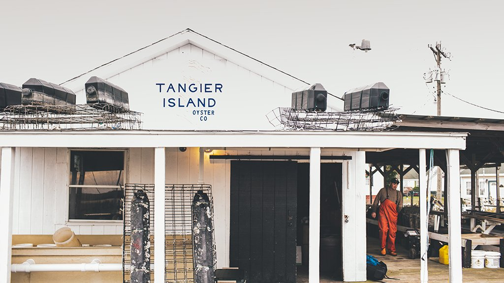 Tangier Island Is Sinking. Its Population Is Shrinking. And These Guys Want to Make It the Oyster Capital of the East Coast