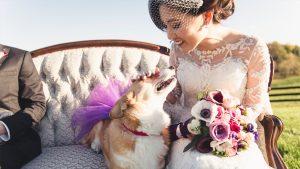 Gorgeous Light-Filled Wedding at Virginia's Shadow Creek