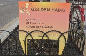 SCANDAL: Those Haiku Displayed All Around Downtown DC…Aren't Haiku