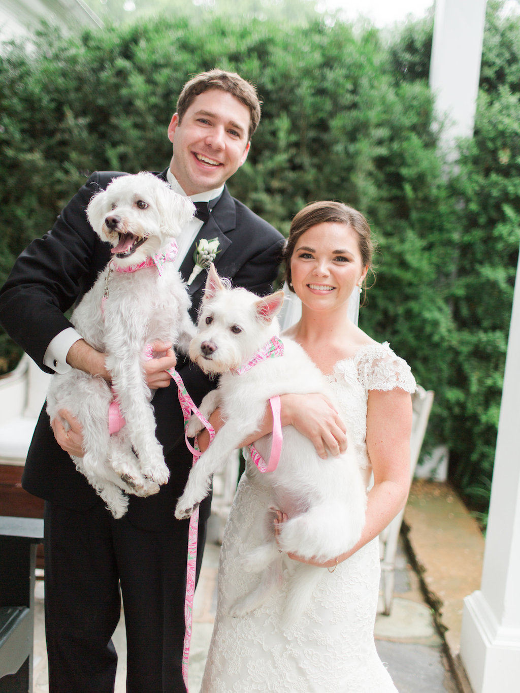 4-1-16-adorable-dogs-at-washington-weddings-14