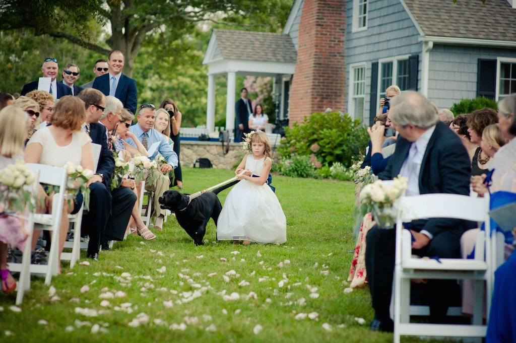 4-1-16-adorable-dogs-at-washington-weddings-2
