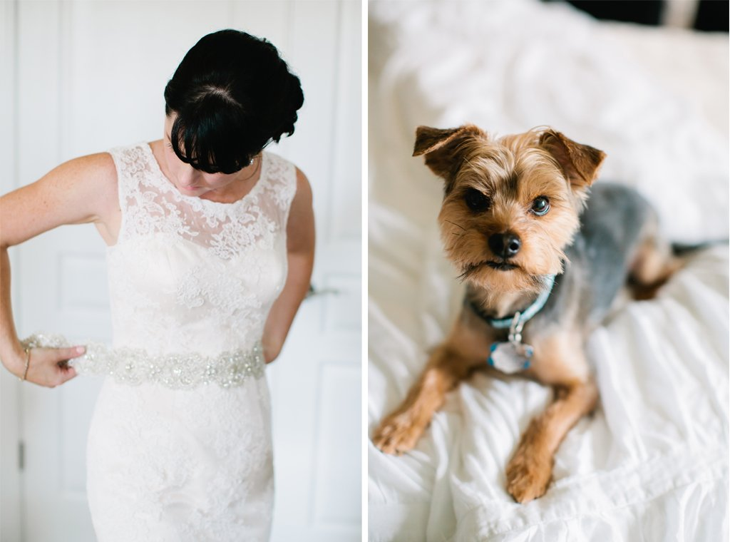 4-1-16-adorable-dogs-at-washington-weddings-3