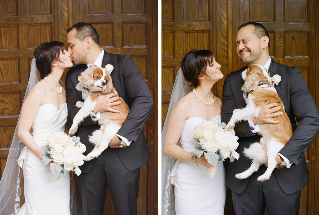 4-1-16-adorable-dogs-at-washington-weddings-8