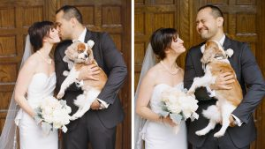 15 Reasons Having Your Dog at Your Wedding is the Worst Idea Ever