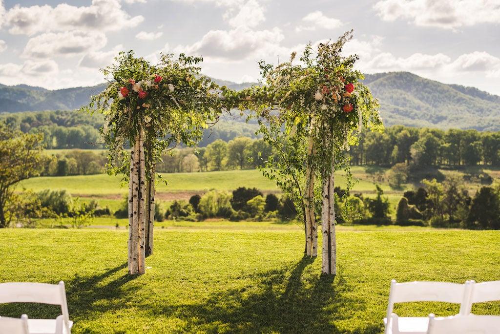 4-29-16-gorgeous-winery-vineyard-wedding-charlottesville-virginia-pippin-hill-6