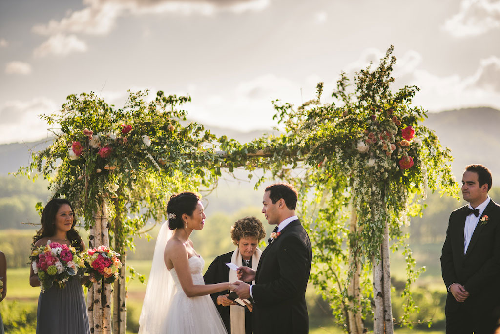 4-29-16-gorgeous-winery-vineyard-wedding-charlottesville-virginia-pippin-hill-8
