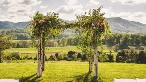 Forget Napa Valley: The Vineyard You Want to Marry on Is Right Here in Virginia