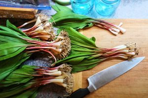 Everything You Need to Know About Ramps
