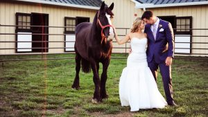 A Pretty-in-Pink Wedding That Will Make You Want to Get Married in Horse Country
