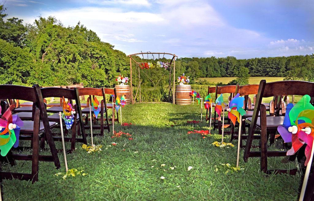 6-10-16-rainbow-same-sex-vineyard-wedding-virginia-6
