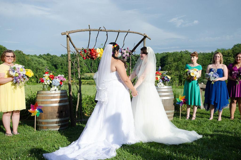 6-10-16-rainbow-same-sex-vineyard-wedding-virginia-7