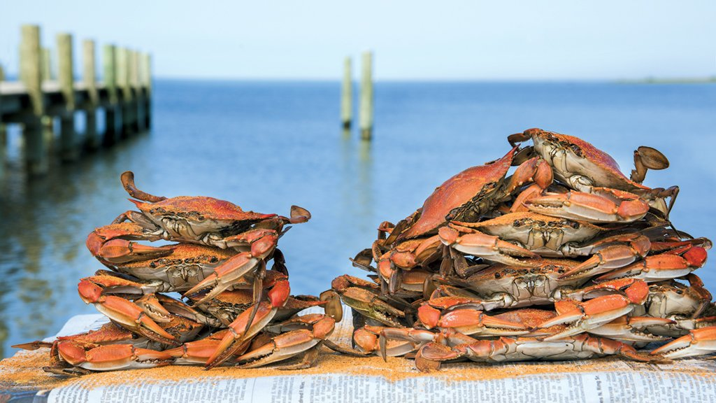 Don't miss tasty crabs, yacht races, and more Chesapeake Bay festivals happening this summer. Photograph by Jay Fleming.
