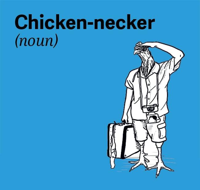 chesapeake-bay-vocab-chicken-necker