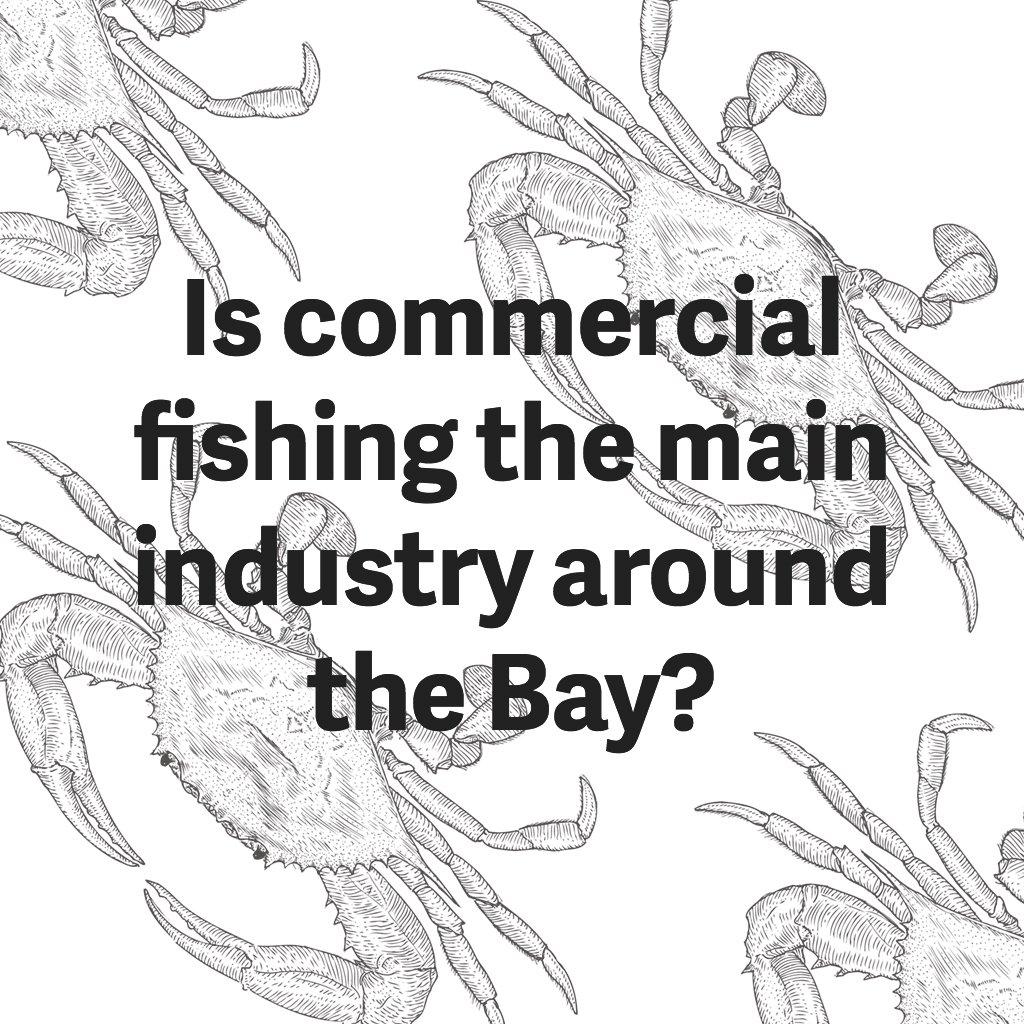 commercial-fishing-around-chesapeake-bay