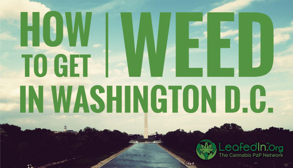 LeafedIn.Org: The Networking App Changing the Face of DC's Marijuana Community
