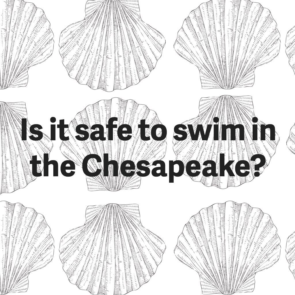 safe-to-swim-chesapeake