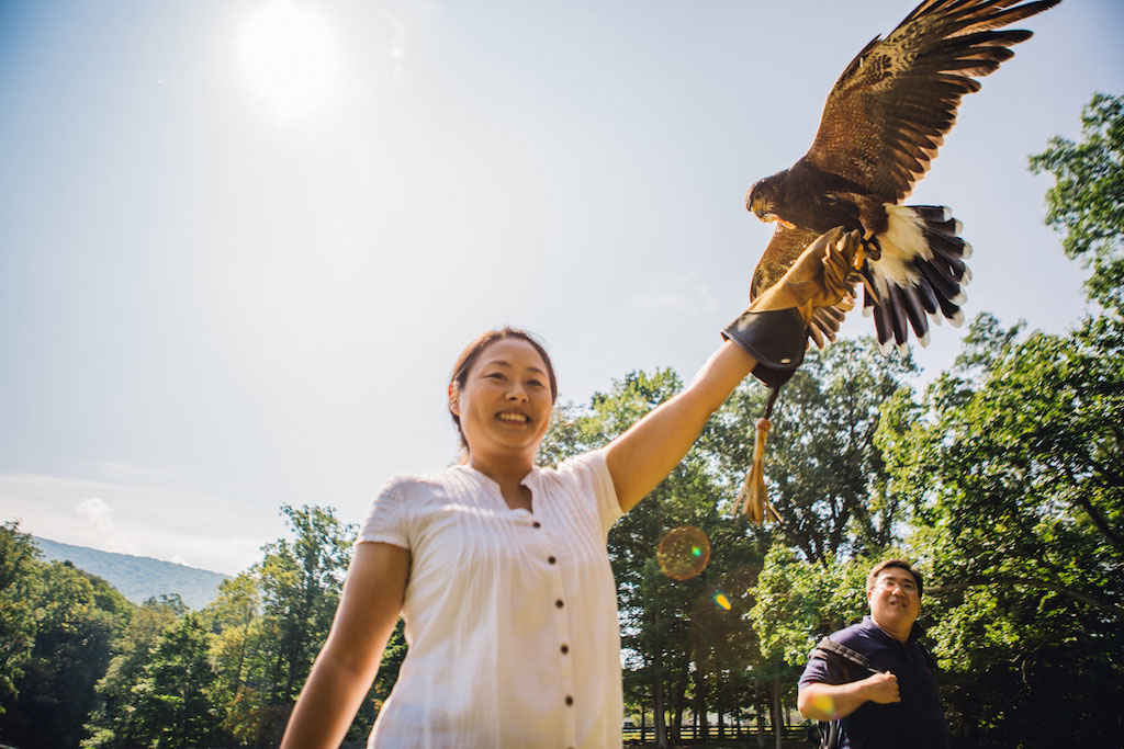 7-21-16-falconry-proposal-engagement-virginia-omni-homestead-resort-1