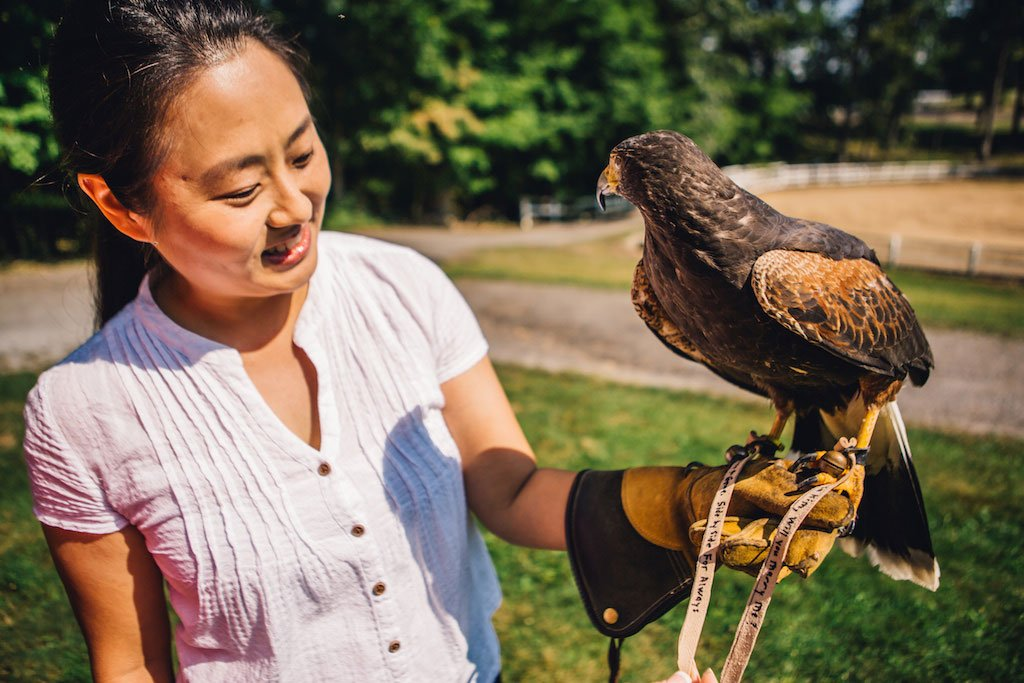 7-21-16-falconry-proposal-engagement-virginia-omni-homestead-resort-3