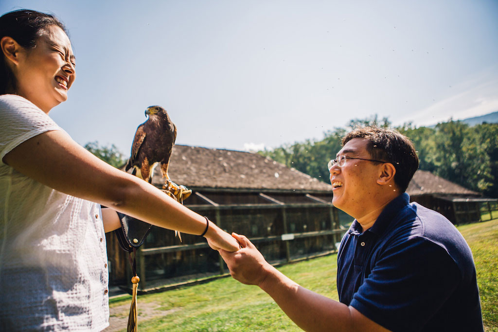 7-21-16-falconry-proposal-engagement-virginia-omni-homestead-resort-5