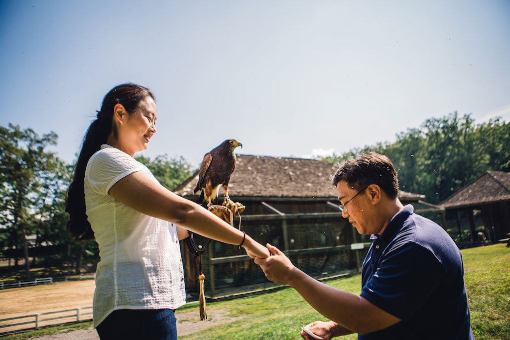 7-21-16-falconry-proposal-engagement-virginia-omni-homestead-resort-6