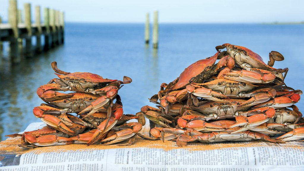chesapeake bay crab houses Photograph by Jay Fleming.