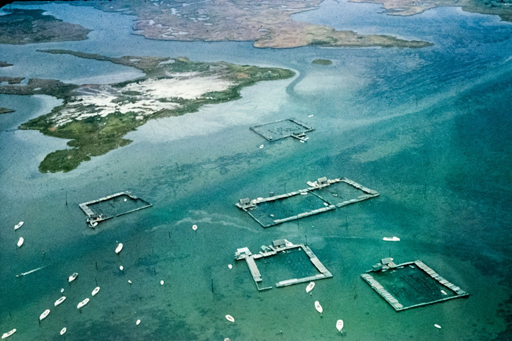 "An aerial view of crab pens around Tangier Island in 1964. Photograph by Flickr user <a href=""https://www.flickr.com/photos/29388462@N06/20673576142/"">Chesapeake Bay Program</a>."
