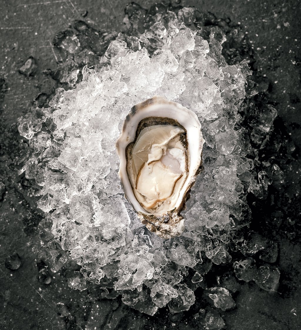 chesapeake-bay-virginia-oyster-trail