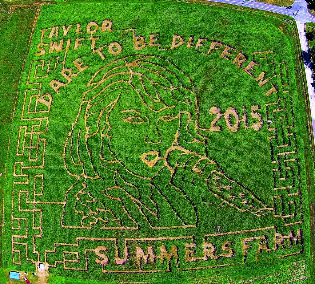 Last year, Summer's Farm in Frederick cut a maze in the shape of Taylor Swift's face. Photo courtesy of Summer's Farm.