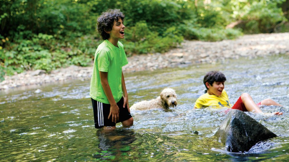 """""""It Feels Like a Fairy Tale"""" and 8 Other Reasons Why People Love Rock Creek Park"""