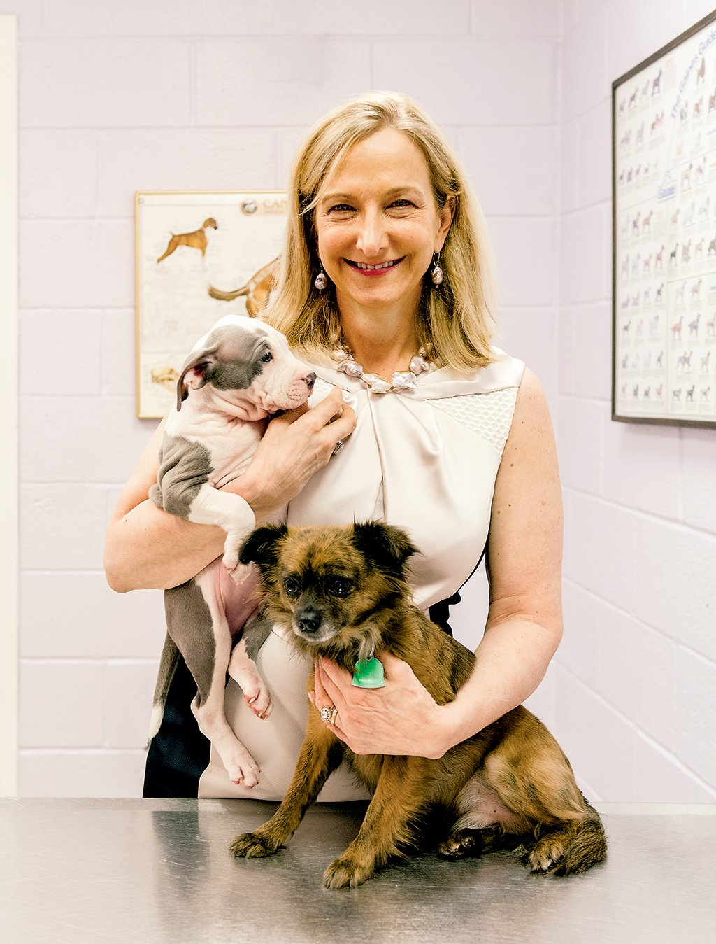 DC Animal Shelters: DC's animal group, led by Lisa LaFontaine, is now the most comprehensive in the country. Photograph by Andrew Propp.