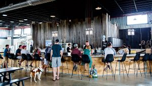 How Loudoun County Became a Beer-Head's Mecca