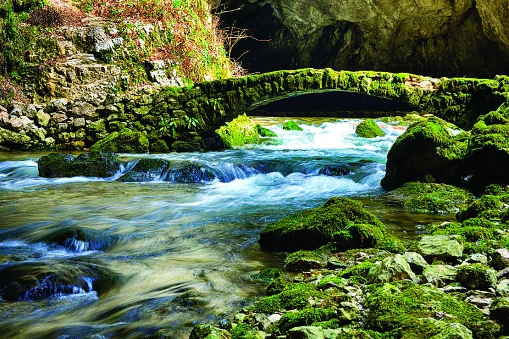 Photograph of Rock Creek Park by Susan A Roth