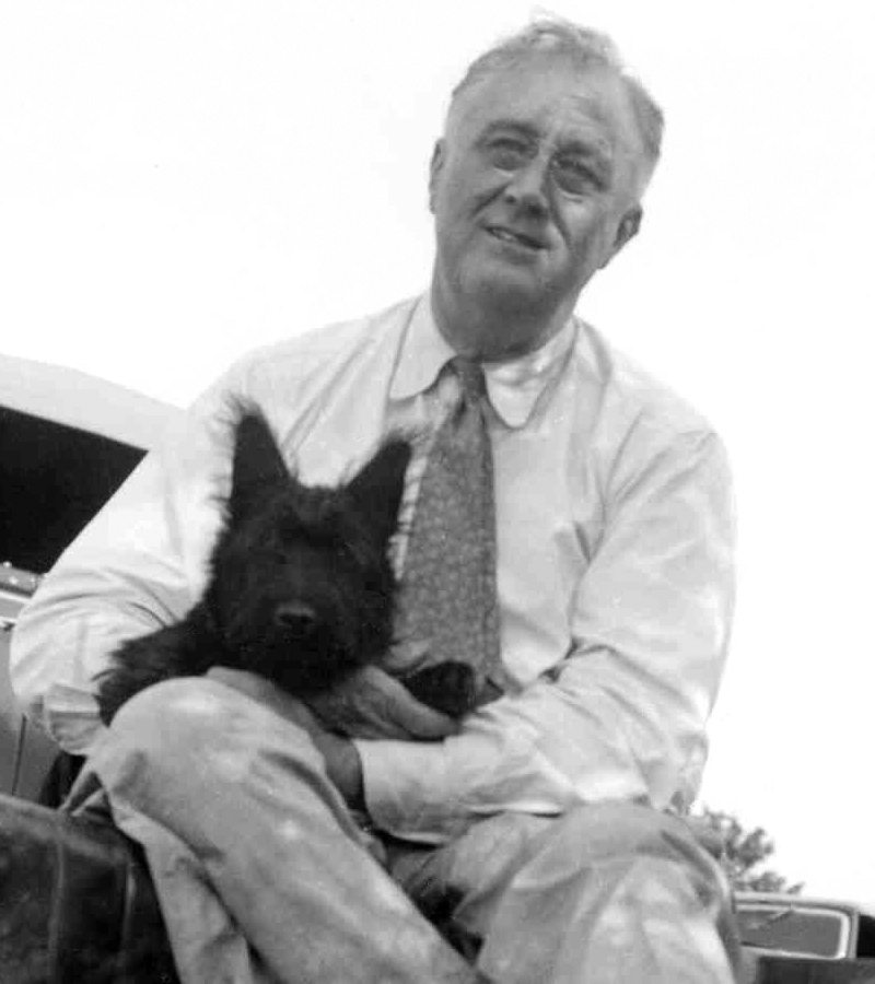 President Franklin D. Roosevelt and four month old Fala in August 1940 at a picnic near Pine Plains, NY. Taken by an employee of the Executive Office of the President of the United States.