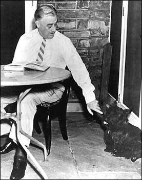 President Franklin D. Roosevelt with Fala. Taken by an employee of the Executive Office of the President of the United States.