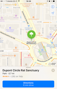 dupont-circle-rats-maps