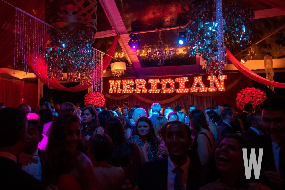 Global Leadership Goes Glam At 48th Annual Meridian Ball