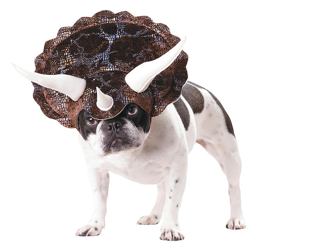 animal-planet-triceratops-medium-dog-costume-13638735