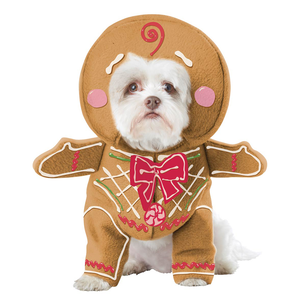 gingerbread-pup-dog-costume-5512