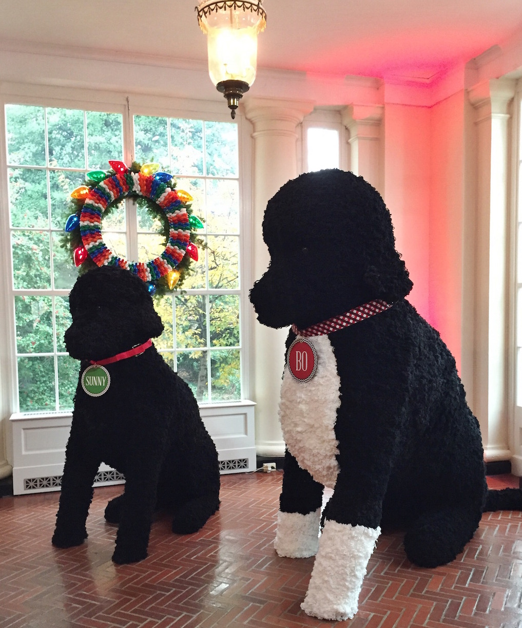 Larger than Life replicas of Bo & Sunny made of 25,000 yarn poms-poms. Photo by Andrea Marks.